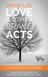 Collection 6: Life Purpose - Love & Other Brave Acts Series by Diane Lee