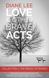 Collection 1: The Break Up Diaries - Love & Other Brave Acts
