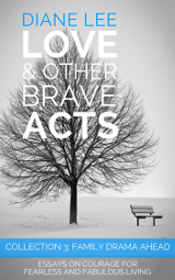 Collection 3: Family Drama Ahead - Love & Other Brave Acts series by Diane Lee